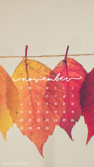 Pretty Leaf photography colorful leaves yellow orange red November calendar  2016 wallpaper you can download for
