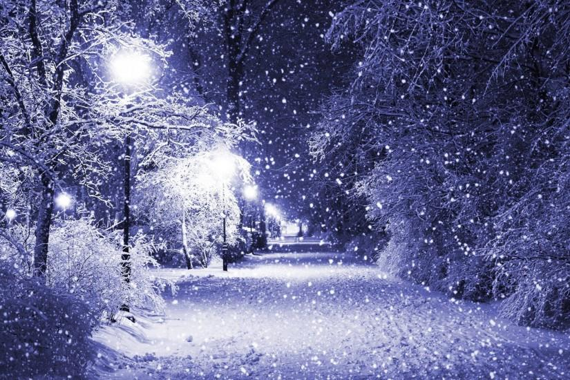 best winter background 2560x1600 picture