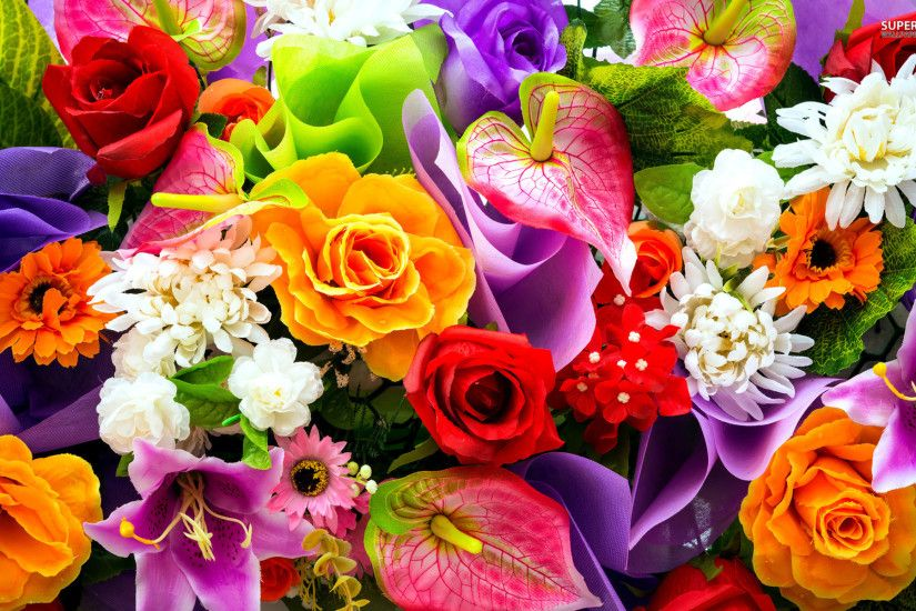 Colorful Flowers Wallpapers - HD Images New