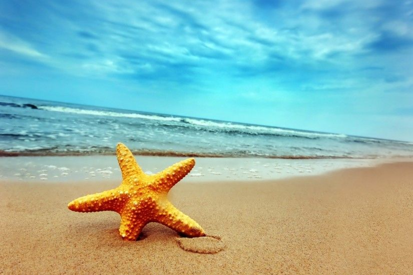 3840x2160 Wallpaper starfish, coast, beach, sand