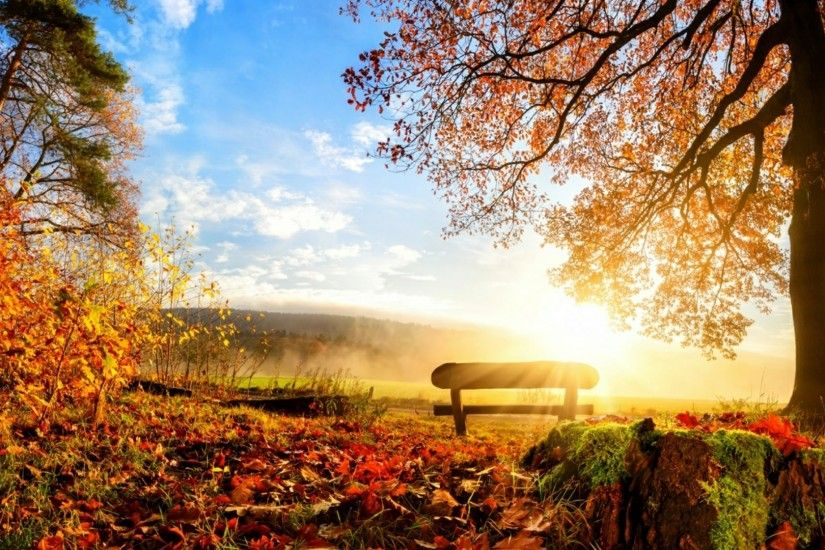 ... indian summer wallpaper wallpaper studio 10 tens thousands ...