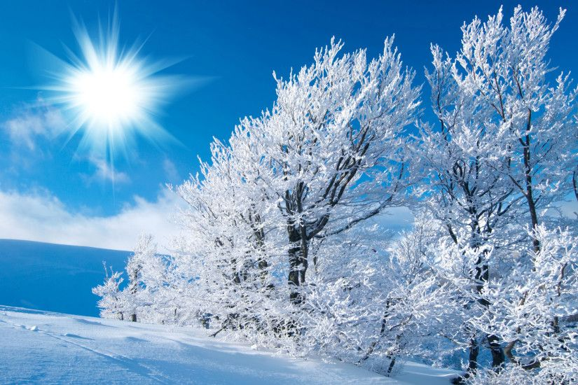 HD Winter Snow Wallpaper
