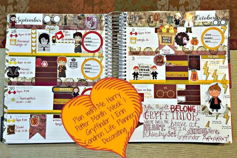 Plan with Me Harry Potter Month | Week 1: Gryffindor | Erin Condren Life  Planner Decorating - YouTube