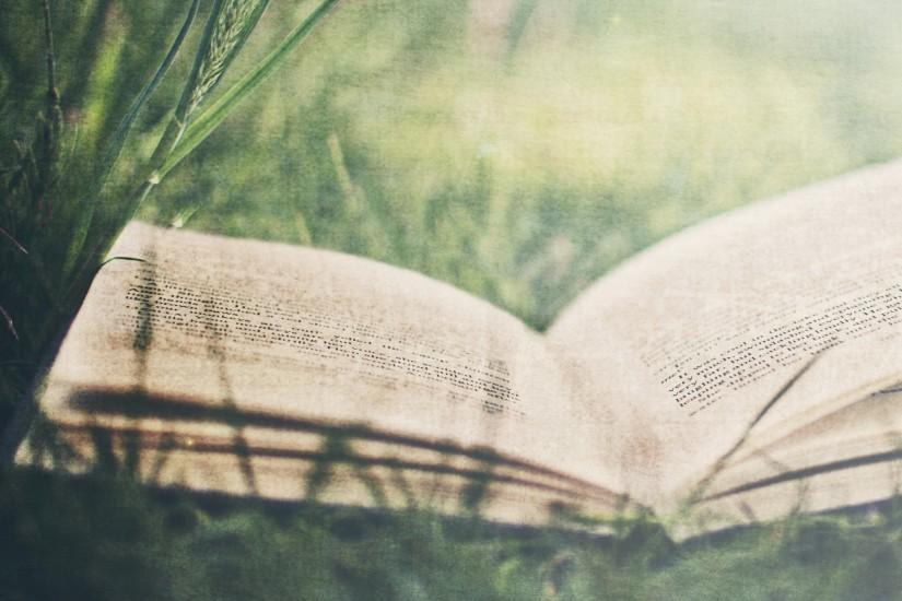 books, Grass Wallpaper HD