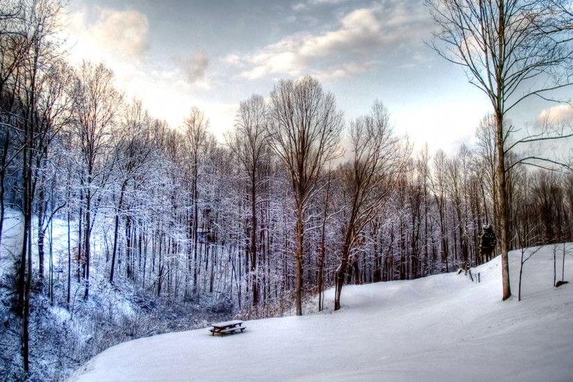Winter Scene Illustration HD Wide Wallpaper for Widescreen (34 Wallpapers)