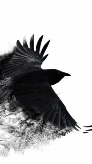 Preview wallpaper crow, wings, bird swing 1440x2560