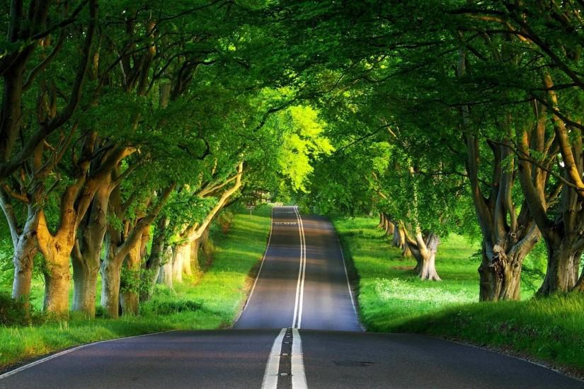 free download road background 1920x1200 mac