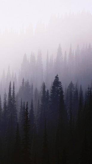 7734647-forest-background-tumblr-wood-iphone-6-plus-