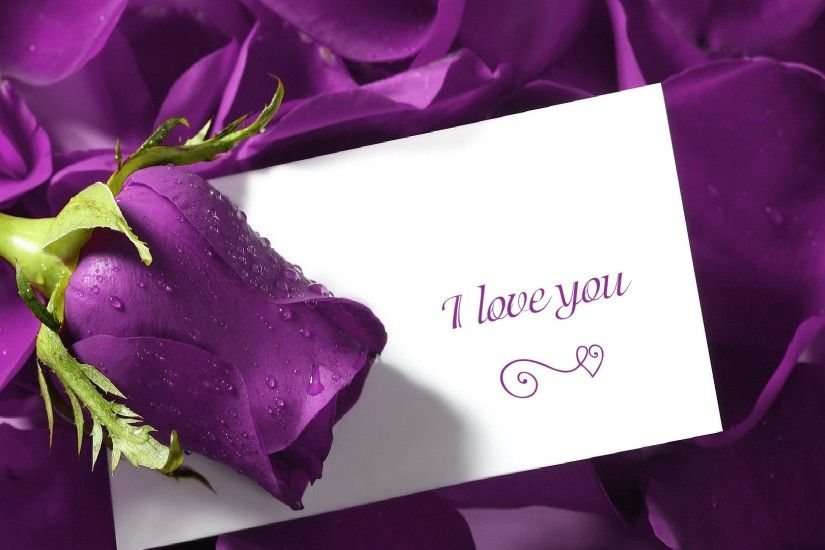 Purple Backgrounds FB Covers | Love You Quotes Flower Background HD  Wallpaper I Love You Quotes