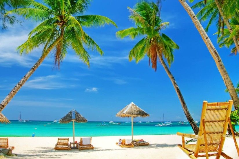 Sunbeds and palm trees on a beach wallpaper