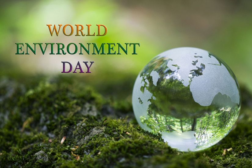 world environment day protect for wallpaper