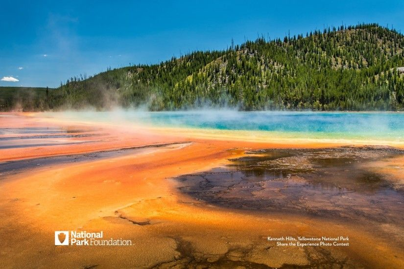 Click here to download the Yellowstone Thermal Pools wallpaper