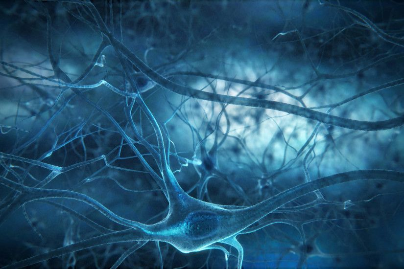 Neurons Wallpapers, Full HDQ Neurons Pictures and Wallpapers .