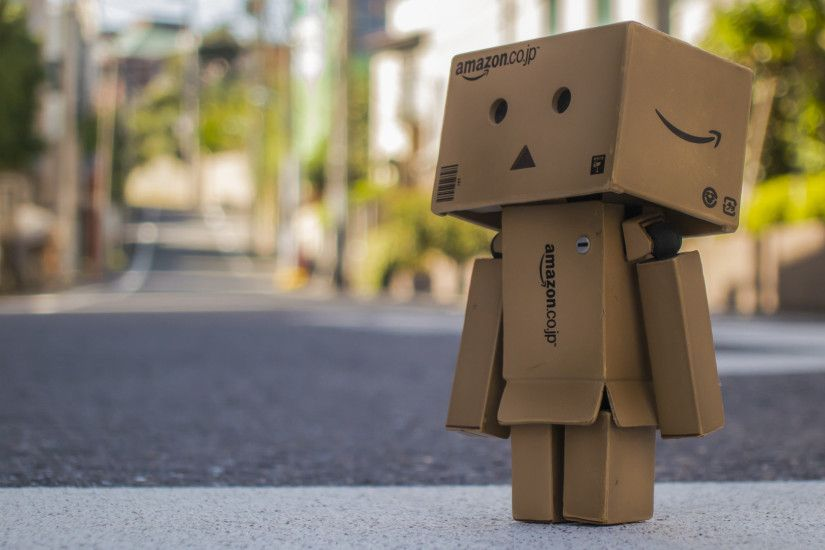 Japan Danbo Amazon