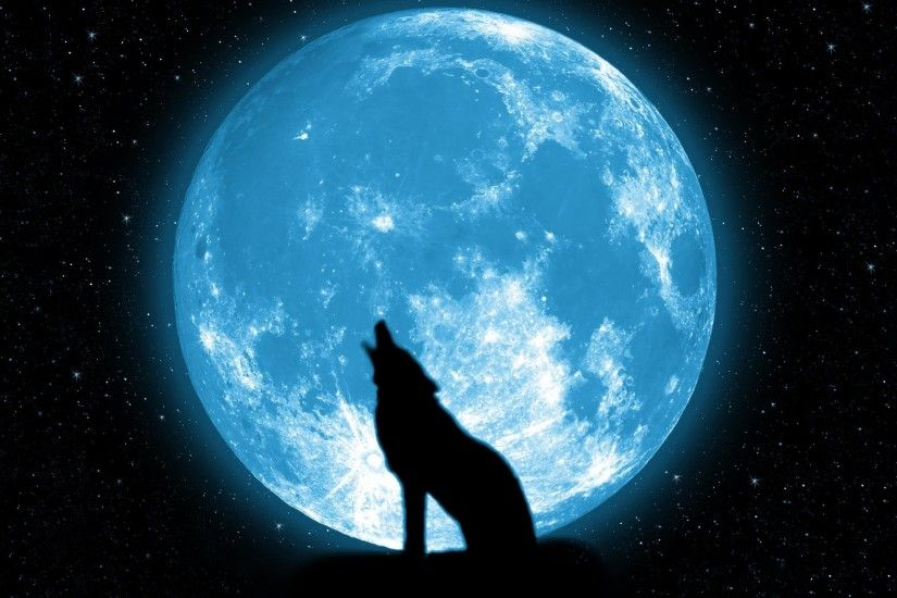 wolf howling on the moon Wallpapers HD