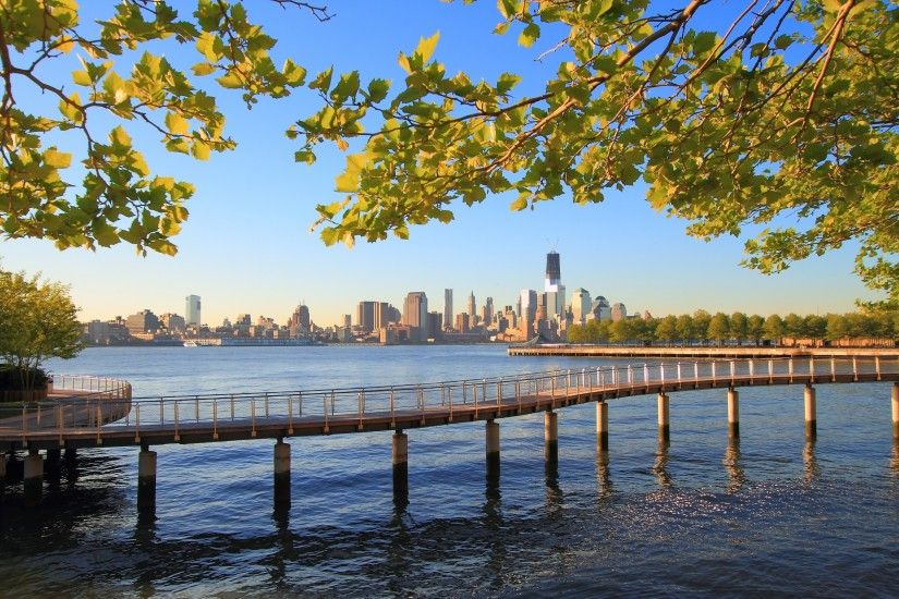 2560x1600 Wallpaper new york, city, water, ocean, nature, trees, branches