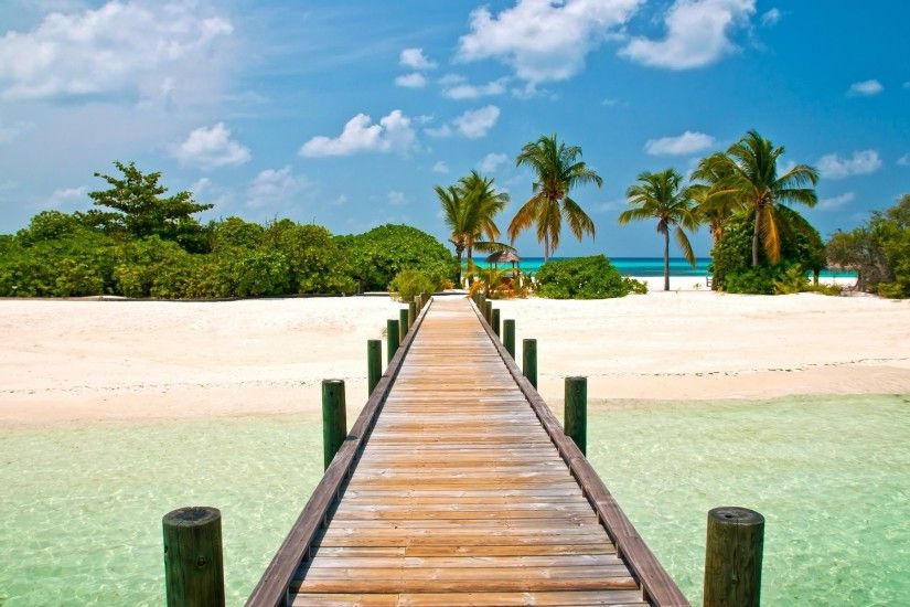 20 Tropical Backgrounds Wallpapers Images Freecreatives Beach Background  For You