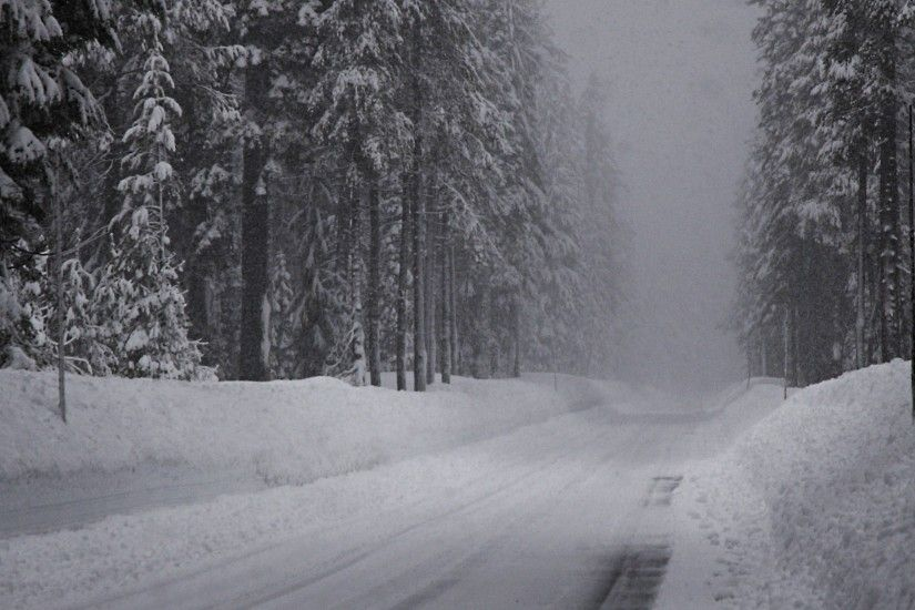 3840x2160 Wallpaper winter, road, snow, fir grove, panorama
