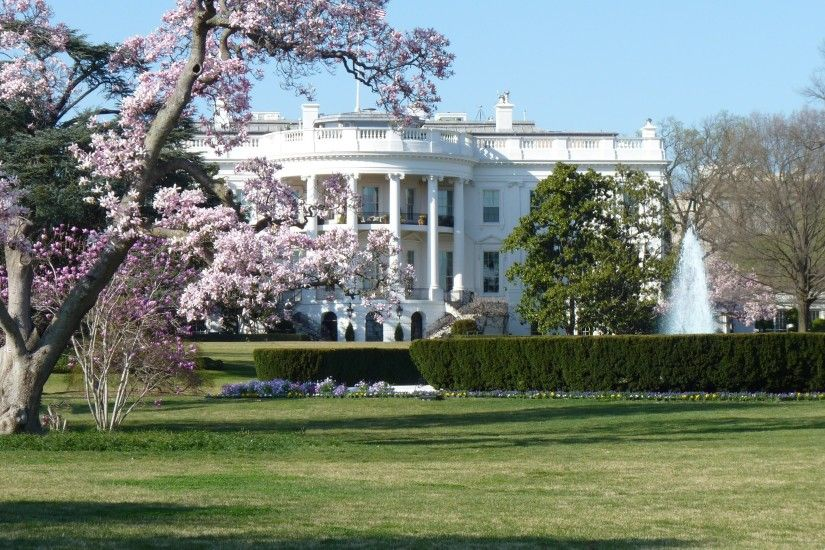 Man Made - White House USA America Wallpaper