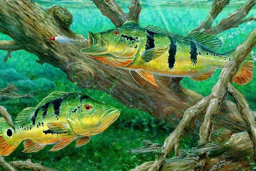 bass-fishing-wallpapers-hd-9