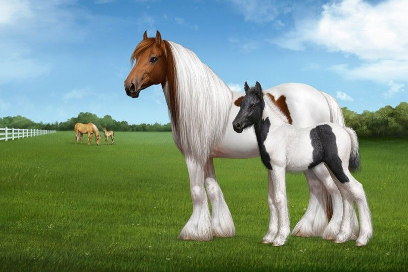 YouWall White Horse Wallpaper wallpaperwallpapersfree