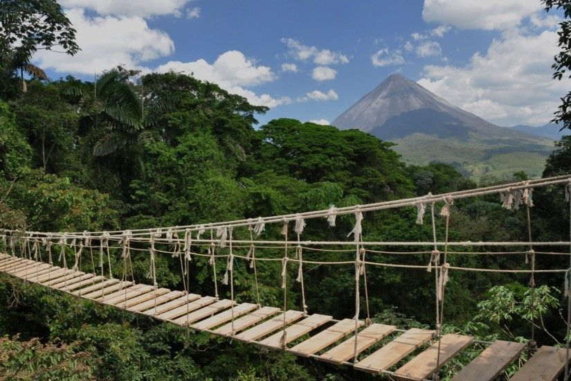 Rope Bridge Costa Rica wallpapers and stock photos