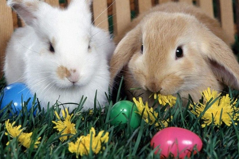 6. free-easter-desktop-wallpapers-backgrounds6-600x338