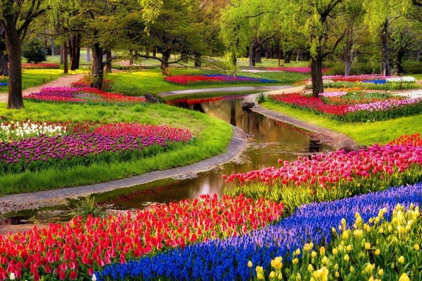 ... Colorful-Garden-Flowers-hd-free-wallpapers ...