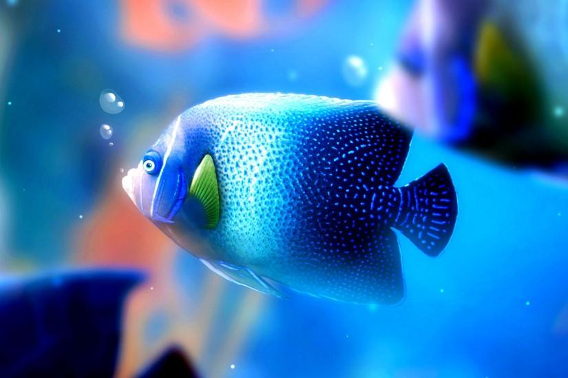 Fish 4K Fish Background ...