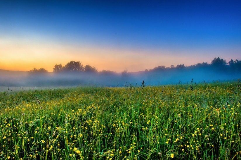 Foggy Field Farm Nice Nature Wallpaper
