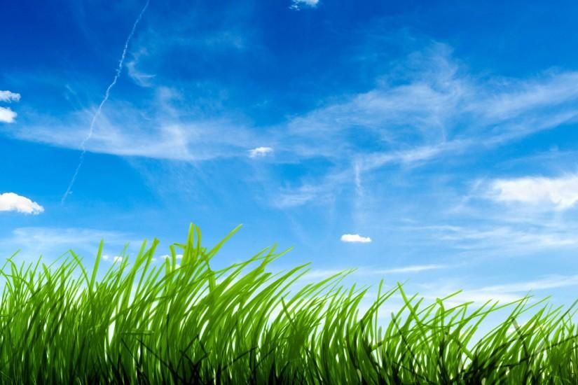 Blue Sky Green Grass Wallpapers | HD Wallpapers