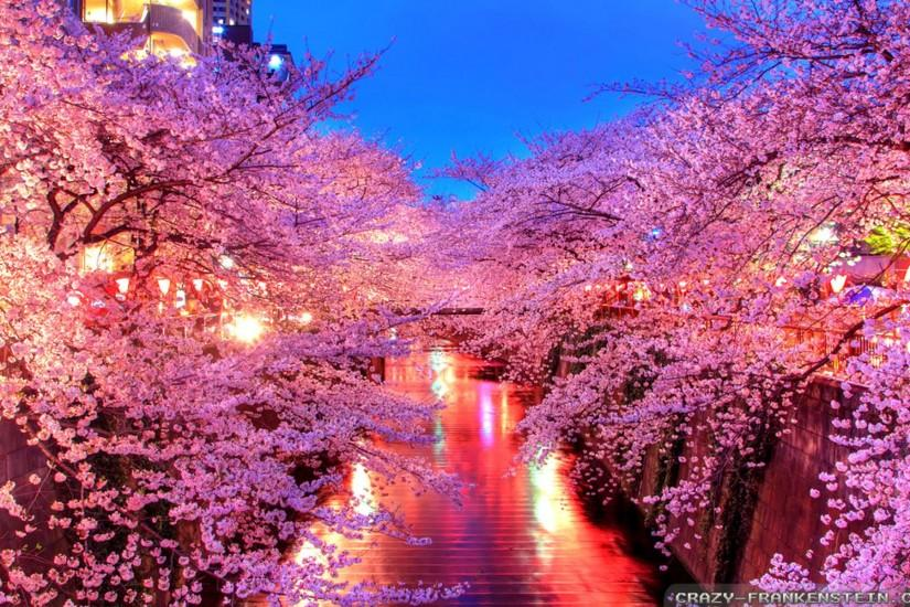 Spring In Japan Wallpaper ...