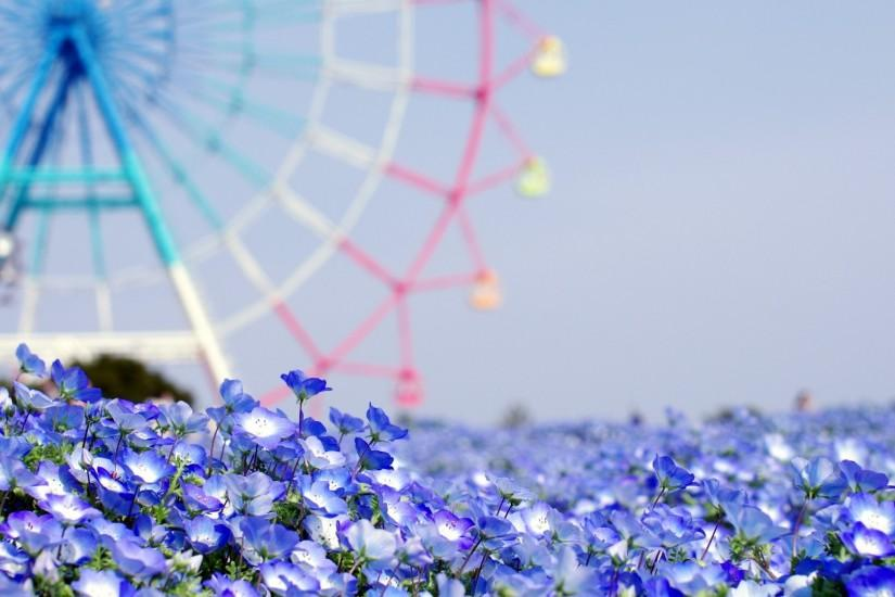 Wallpapers For Summer Iphone Backgrounds Tumblr: Flower Background Tumblr ·① Download Free Stunning
