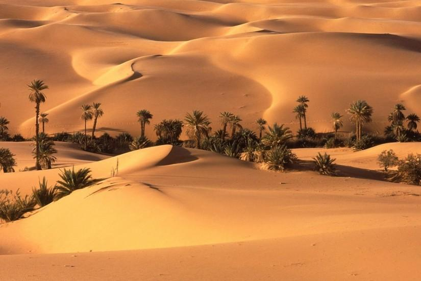 download free desert wallpaper 1920x1080 xiaomi