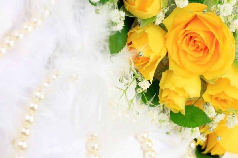 Rose · Yellow Roses Background ...