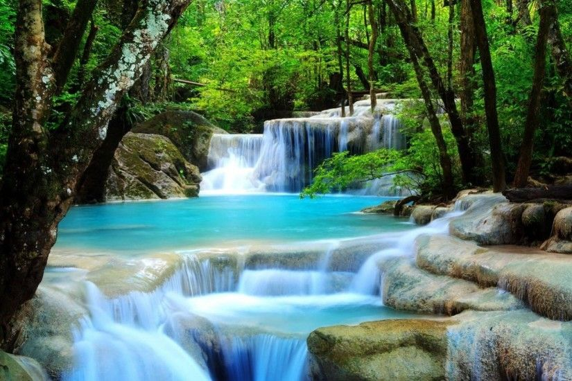 Waterfall Image For Desktop Wallpaper 2560 x 1600 px 1.2 MB rainforest  tropical natures flowers beautiful
