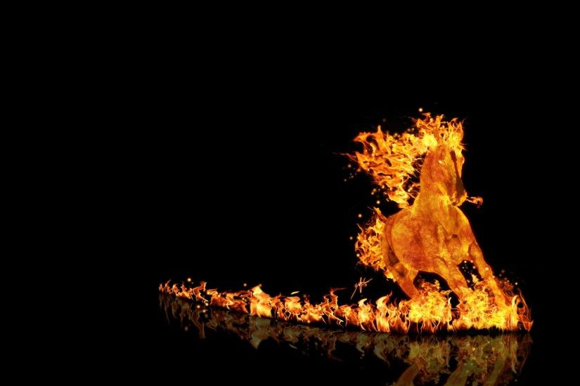 Animal Fire Wallpapers for Desktop Background