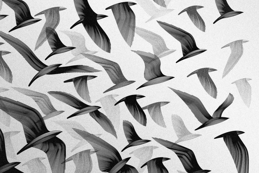 Black And White Birds Tumblr Backgrounds Wallpaper with black birds