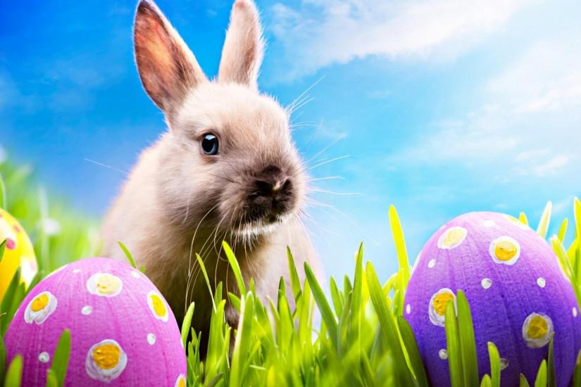 full size easter backgrounds 2048x1536 photo