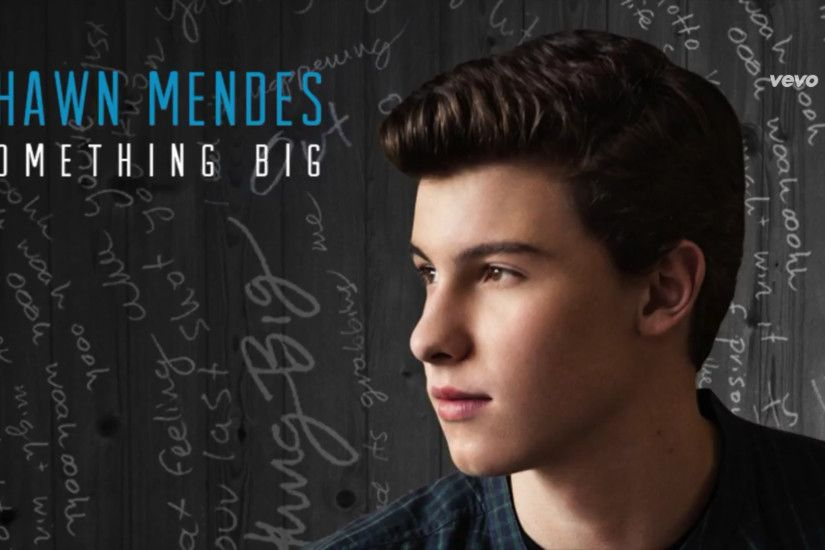 Something Big – Shawn Mendes. image