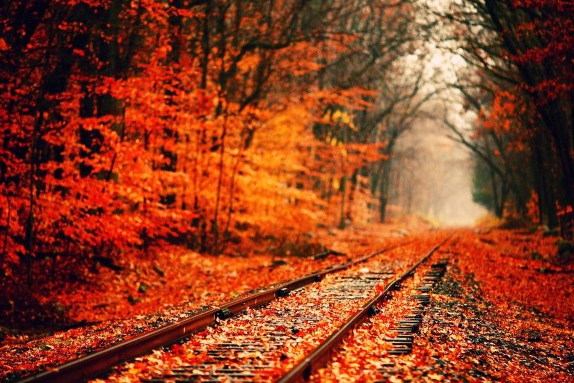 Autumn Wallpapers, Free Desktop Backgrounds - Wallpaper Path