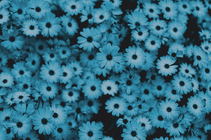 blue wallpaper with flowers