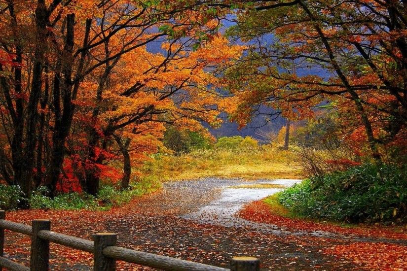 Fall Scenery Wallpapers - Wallpaper Cave