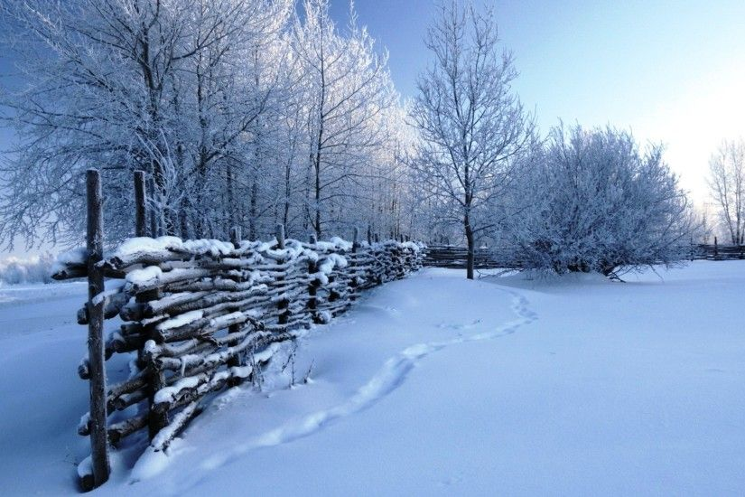 Free Wallpapers Winter Scene