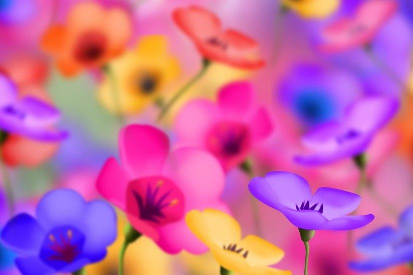 Preview wallpaper flowers, colorful, bright, positive 1920x1080
