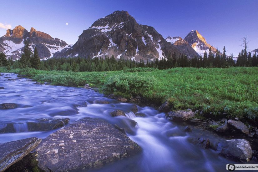 Magog Creek and Naiset Point, Mount Assiniboine Provincial Park/Anse Magog  et mont Naiset