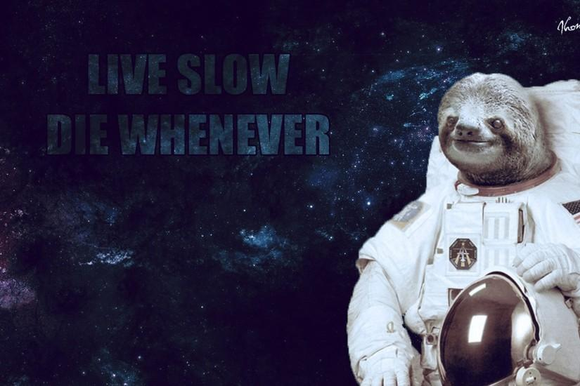 ... Sloth Wallpaper (1080) by MillowArts