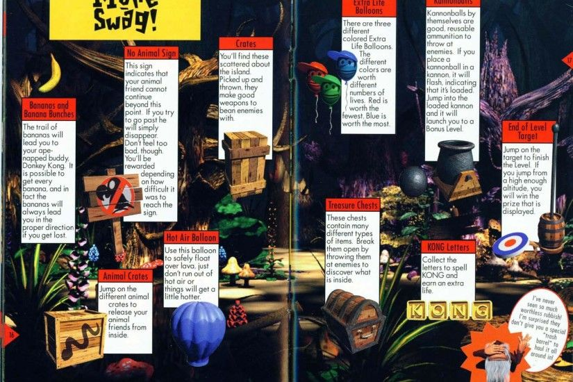 Donkey Kong Country 2: Diddy's Kong Quest instruction booklet, page 17.