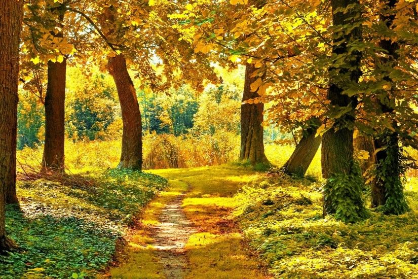 21+ Best HD Autumn Landscape Wallpapers | feelgrPH · Landscape WallpaperWallpaper  Desktop