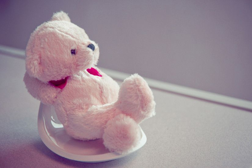 Teddy Bear Lovers images teddy HD wallpaper and background photos
